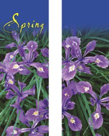 Beautiful Spring Purple Iris Double Banner