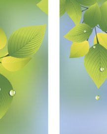 Spring and Summer Green Leaves with Raindrops Double Banner