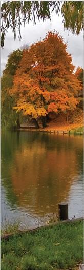 Beautiful Fall Lake Banner