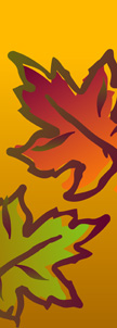 Festive Fall Leaves on Yellow Background Banner
