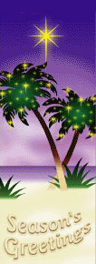 Sandy Beach with Decorated Palm Trees Seasons Greetings Banner